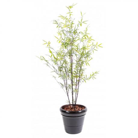 Bambou cannes fines Black Plast 170cm