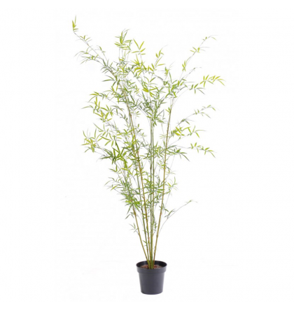 Bambou artificiel cannes fines Green Plast 195cm