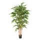 Bambou New Luxe Dense