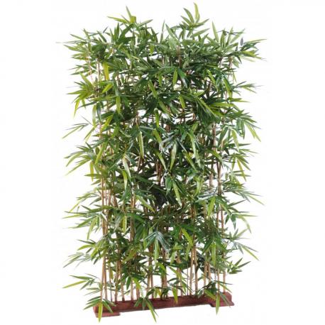 Haie Bambou Japanese dense