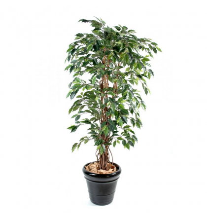 Ficus lianes artificiel grandes feuilles de 150 à 210cm