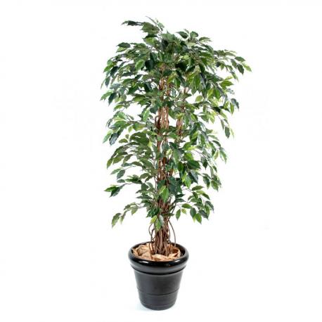Ficus lianes artificiel petites feuilles