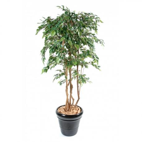 Ficus artificiel multitree Natasja