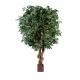 Ficus Géant artificiel