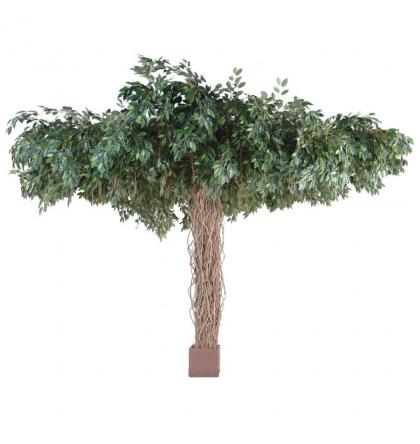 Ficus artificiel lianes Umbrella 320cm Ø450cm