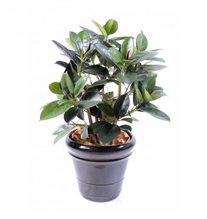 Ficus artificiel | Elastica buisson 90cm