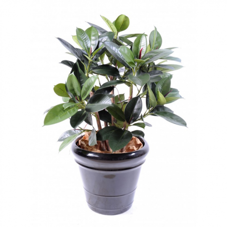 Ficus artificiel Elastica buisson 90cm