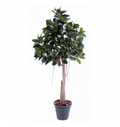 Ficus artificiel Rubber plant tree 220cm