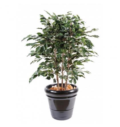 Ficus artificiel Exotica buisson 80 et 110cm