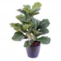 Lyrata buisson | Ficus artificiel 60cm