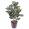 Lyrata tige | Ficus artificiel (figuier) 90 à 190cm