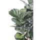 Lyrata artificiel tige (figuier) 90 à 190cm
