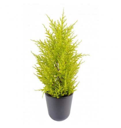 Cyprès artificiel mini Juniperus UV 55cm