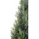 Cyprès artificiel mini New UV 60 à 270cm