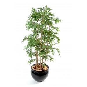 Bambou oriental