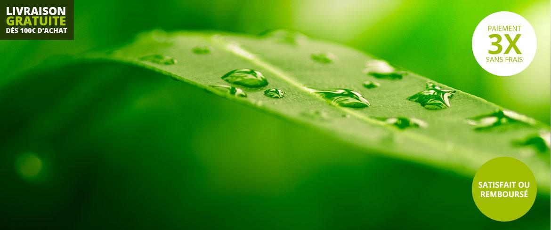 Viva Verde